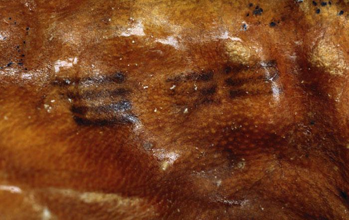 Otzi – 5000 Year Old Mummy Reviels Secrets